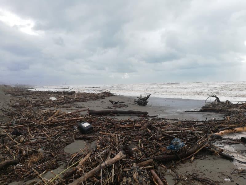 legname spiaggia